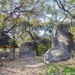 Haka Game Park. First posted by Great Zimbabwe Guide on January 19, 2018 in category: Top things to do, Travel journal